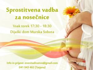 Sprostitvena-vadba-za-nosečnice-murska-sobota-web